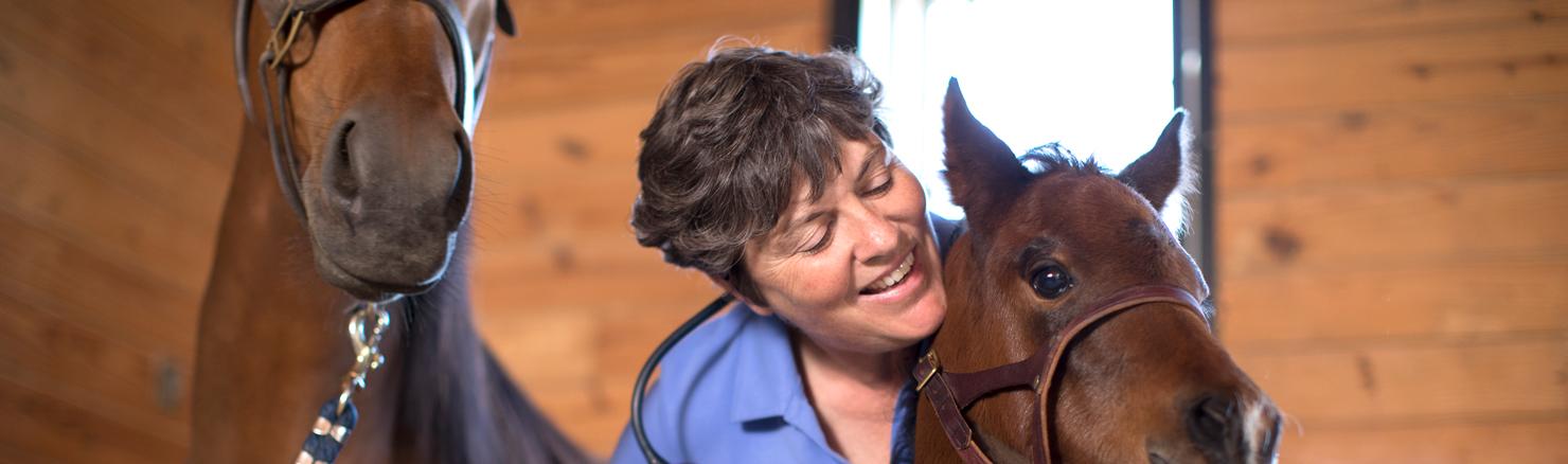GVEC Foal care